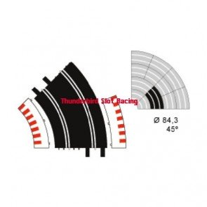 Ninco Standard Curve x 2