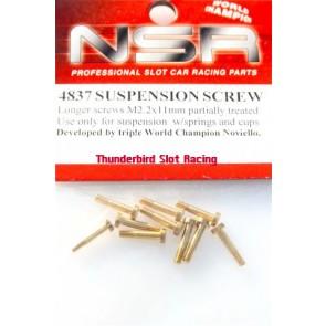 NSR Suspension Screw x 10